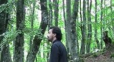 Stanze sonore - Esperimento n. 3: Il Bosco di Sant'Antonio (2012 Video)