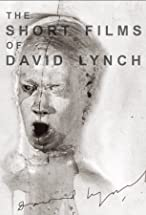 Primary image for The Short Films of David Lynch