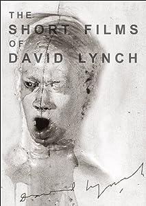 Watch online online movie The Short Films of David Lynch [Mkv]