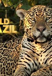 Wild Brazil Poster