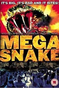 Primary photo for Mega Snake