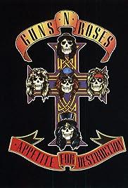 Guns N Roses: Live at the Ritz Poster