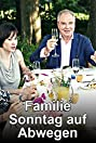 Familie Sonntag auf Abwegen (2013) Poster