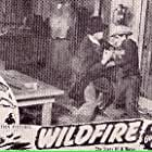 Sterling Holloway, Gene Alsace, William Farnum, and Bob Steele in Wildfire (1945)