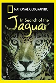 In Search of the Jaguar Poster