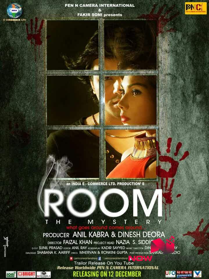 Room The Mystery 2015 WebRip Hindi 720p