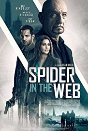 Watch Full HD Movie Spider in the Web (2019)