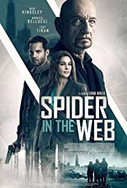 Spider in the Web Poster