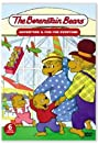 The Berenstain Bears (2002) Poster