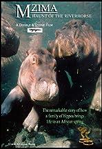 Haunt of the Hippo