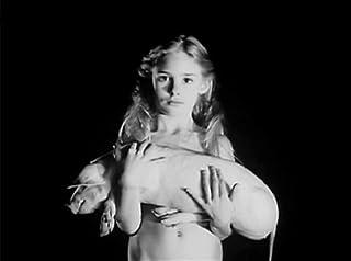 Pensées et visions dune tête coupée (1991) - IMDb