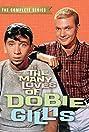 The Many Loves of Dobie Gillis (1959) Poster