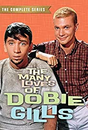 The Many Loves of Dobie Gillis Poster - TV Show Forum, Cast, Reviews