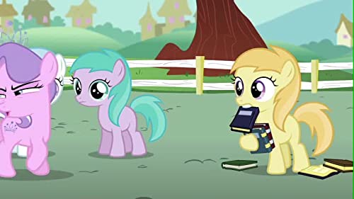 My Little Pony: Friendship Is Magic: Vote For Pip