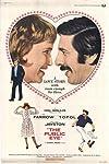 The Public Eye (1972)