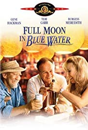Full Moon in Blue Water Poster