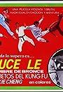 Bruce's Secret Kung Fu