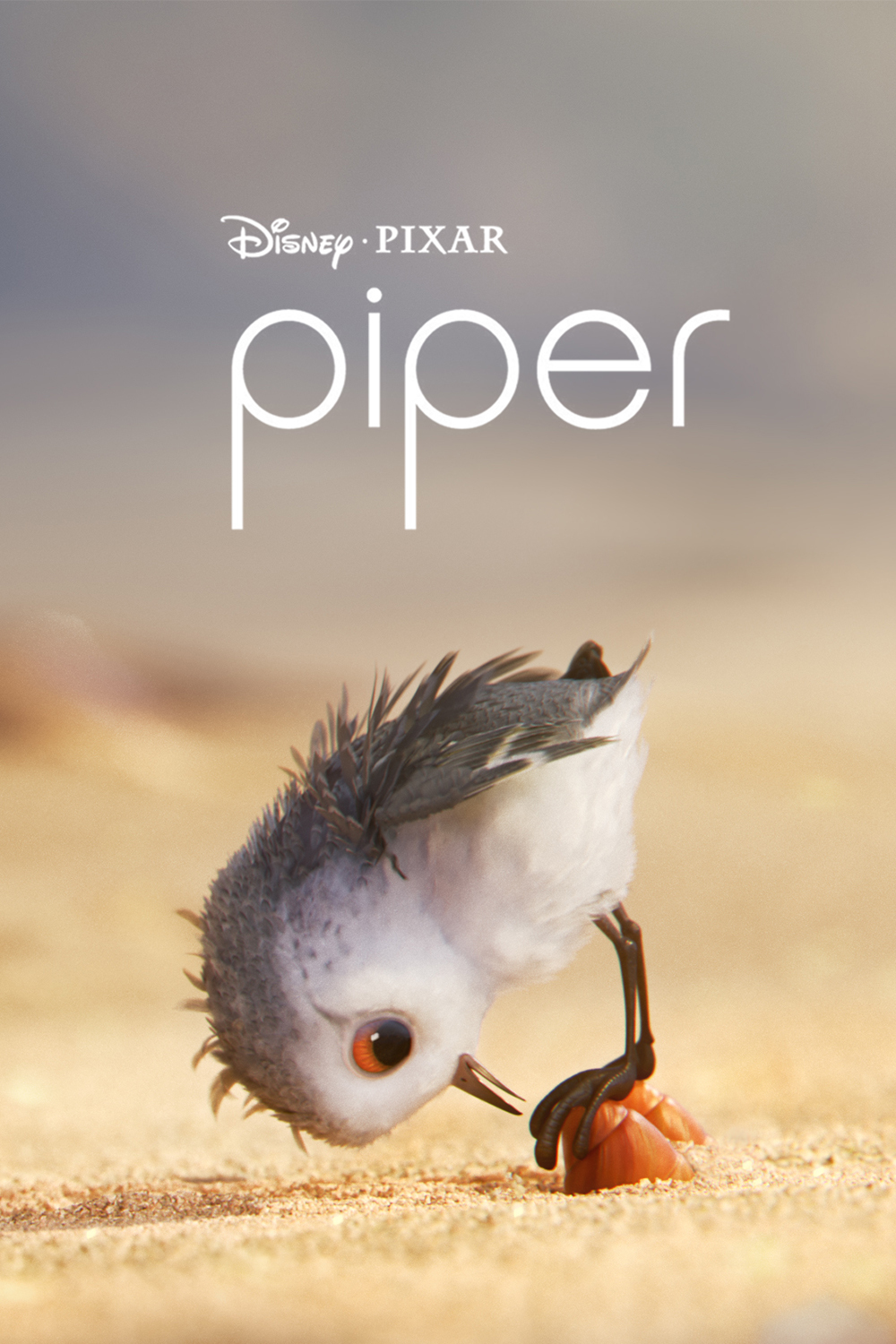 Piper (2016) BluRay 720p & 1080p