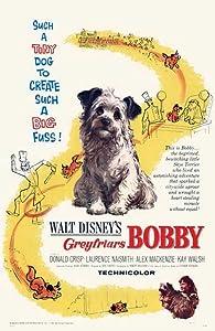 Greyfriars Bobby: The True Story of a Dog Norman Tokar