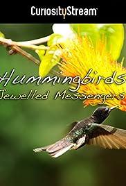 Hummingbirds: Jewelled Messengers (2012) 1080p