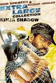 Extralarge: Ninja Shadow Poster