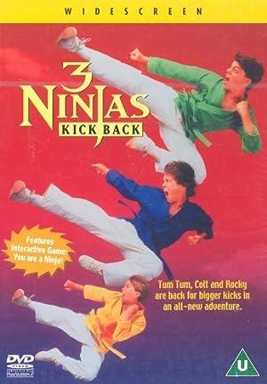 3 Ninjas Kick Back Poster