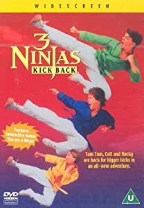3 Ninjas Kick Back USA