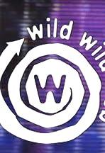 Wild Wild Web