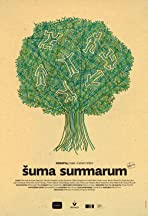 Suma summarum