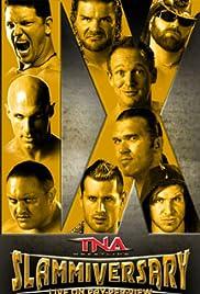 TNA: Slammiversary IX Poster