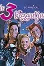 De 3 biggetjes (2003) Poster