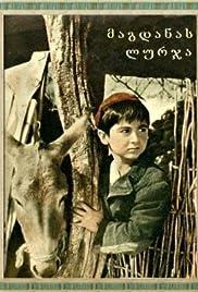 Magdana's Donkey Poster