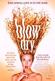 Blow Dry Poster