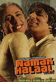 Primary photo for Namak Halaal