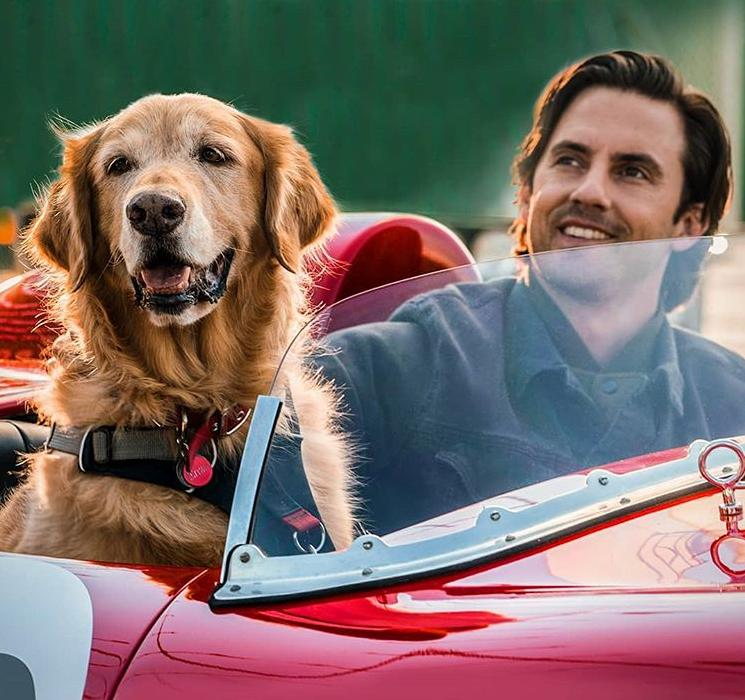 Milo Ventimiglia and Butler in The Art of Racing in the Rain (2019)