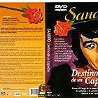 Destino de un capricho (1972)