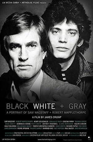 Where to stream Black White + Gray: A Portrait of Sam Wagstaff and Robert Mapplethorpe