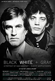 Black White + Gray: A Portrait of Sam Wagstaff and Robert Mapplethorpe(2007) Poster - Movie Forum, Cast, Reviews