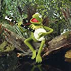 Kermit the Frog in The Muppet Movie (1979)