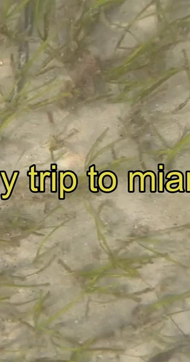 My Trip to Miami (2017) - Quotes - IMDb