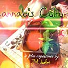 Cannabis Culture: Seven Types of Tokers (2017)