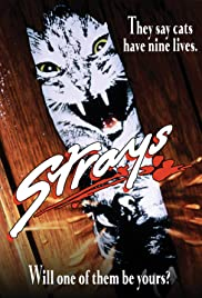 Strays Poster