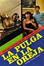 La pulga en la oreja (1981) Poster