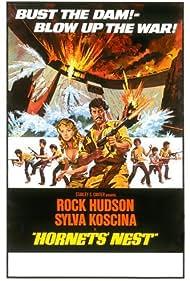 Hornets' Nest (1970) Poster - Movie Forum, Cast, Reviews