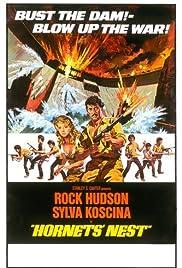 Hornets' Nest (1970) 720p