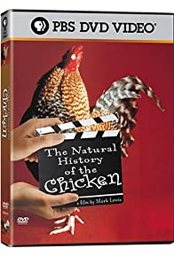 Primary photo for The Natural History of the Chicken