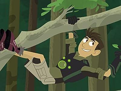 Adult downloads free full movie Rainforest Stew [1680x1050]