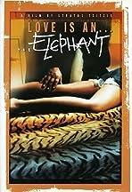 Love Is an Elephant