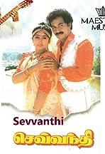 Sevvanthi