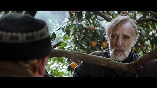 Trailer for Tangerines